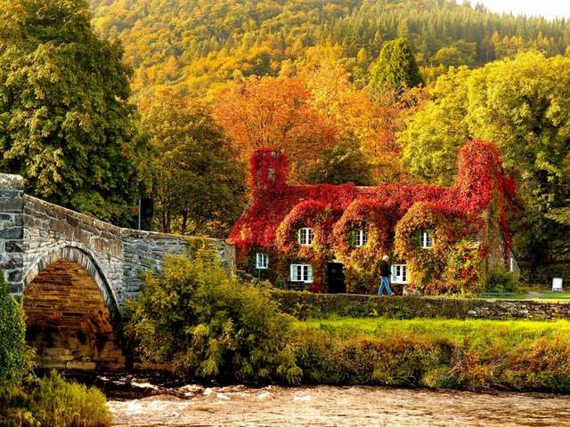 Autumn in Snowdonia National Park Llanrwst Wales UK - Marvellous autumn landscape of Snowdonia National Park in Llanrwst, North Wales, UK, with Pont Fawr, a narrow stone bridge with three arches over the Afon Conwy river and a picturesque cottage from the 15th century, which houses courthouse, covered with a copper-red ivy.<br /> Llanrwst is a small town in Conwy County Borough, Wales, which develops around the wool trade. The stone bridge Pont Fawr was built in 1636 and connects the town with Gwydir manor house. Snowdonia National Park covers 823 square miles of North-West Wales, and possess ones of the best areas in the UK for cycling and mountain biking. - , autumn, Snowdonia, National, Park, parks, Llanrwst, Wales, UK, nature, natures, places, place, marvellous, landscape, landscapes, North, Pont, Fawr, narrow, stone, bridges, bridge, arches, arch, Afon, Conwy, river, rivers, picturesque, cottage, cottages, 15th, century, courthouse, copper, red, ivy, town, towns, Conwy, County, Borough, wool, trade, Gwydir, manor, house, houses, areas, area, cycling, mountain, biking - Marvellous autumn landscape of Snowdonia National Park in Llanrwst, North Wales, UK, with Pont Fawr, a narrow stone bridge with three arches over the Afon Conwy river and a picturesque cottage from the 15th century, which houses courthouse, covered with a copper-red ivy.<br /> Llanrwst is a small town in Conwy County Borough, Wales, which develops around the wool trade. The stone bridge Pont Fawr was built in 1636 and connects the town with Gwydir manor house. Snowdonia National Park covers 823 square miles of North-West Wales, and possess ones of the best areas in the UK for cycling and mountain biking. Solve free online Autumn in Snowdonia National Park Llanrwst Wales UK puzzle games or send Autumn in Snowdonia National Park Llanrwst Wales UK puzzle game greeting ecards  from puzzles-games.eu.. Autumn in Snowdonia National Park Llanrwst Wales UK puzzle, puzzles, puzzles games, puzzles-games.eu, puzzle games, online puzzle games, free puzzle games, free online puzzle games, Autumn in Snowdonia National Park Llanrwst Wales UK free puzzle game, Autumn in Snowdonia National Park Llanrwst Wales UK online puzzle game, jigsaw puzzles, Autumn in Snowdonia National Park Llanrwst Wales UK jigsaw puzzle, jigsaw puzzle games, jigsaw puzzles games, Autumn in Snowdonia National Park Llanrwst Wales UK puzzle game ecard, puzzles games ecards, Autumn in Snowdonia National Park Llanrwst Wales UK puzzle game greeting ecard