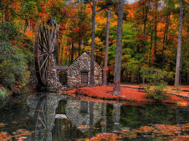 Fall Colors Old Mill Berry College Rome Georgia USA - Beautiful landscape with fall colors of the Old Mill, located on the property of  Berry College of arts in Mount Berry, just north of Rome, Georgia, USA. The extra-large wooden wheel and the stone house of the Old Mill at Berry College was constructed in 1930 by student workers and completely rebuilt during 1977's. The waterwheel of the Old Mill is considered one of the largest in the world with its 42 feet in diameter and three feet in width. The water arrives from the Berry lake and by force of gravity the wheel turns. Producing cornmeal, grits and wheat, which were locally grown at the college, helped to feed students during the Depression Era. - , fall, colors, color, old, mill, mills, Berry, college, colleges, Rome, Georgia, USA, nature, natures, places, place, beautiful, landscape, landscapes, property, properties, Mount, wooden, wheel, wheels, stone, house, houses, student, students, workers, worker, world, diameter, width, water, lake, lakes, force, gravity, cornmeal, grits, wheat, Depression, Era - Beautiful landscape with fall colors of the Old Mill, located on the property of  Berry College of arts in Mount Berry, just north of Rome, Georgia, USA. The extra-large wooden wheel and the stone house of the Old Mill at Berry College was constructed in 1930 by student workers and completely rebuilt during 1977's. The waterwheel of the Old Mill is considered one of the largest in the world with its 42 feet in diameter and three feet in width. The water arrives from the Berry lake and by force of gravity the wheel turns. Producing cornmeal, grits and wheat, which were locally grown at the college, helped to feed students during the Depression Era. Solve free online Fall Colors Old Mill Berry College Rome Georgia USA puzzle games or send Fall Colors Old Mill Berry College Rome Georgia USA puzzle game greeting ecards  from puzzles-games.eu.. Fall Colors Old Mill Berry College Rome Georgia USA puzzle, puzzles, puzzles games, puzzles-games.eu, puzzle games, online puzzle games, free puzzle games, free online puzzle games, Fall Colors Old Mill Berry College Rome Georgia USA free puzzle game, Fall Colors Old Mill Berry College Rome Georgia USA online puzzle game, jigsaw puzzles, Fall Colors Old Mill Berry College Rome Georgia USA jigsaw puzzle, jigsaw puzzle games, jigsaw puzzles games, Fall Colors Old Mill Berry College Rome Georgia USA puzzle game ecard, puzzles games ecards, Fall Colors Old Mill Berry College Rome Georgia USA puzzle game greeting ecard