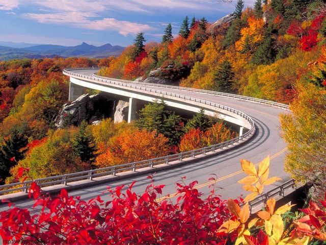 Linn Cove Viaduct on Blue Ridge Parkway North Carolina in Fall - Relaxing scenic beauty in fall from the Linn Cove Viaduct on Blue Ridge Parkway in North Carolina. Blue Ridge Parkway is the most spectacular place in the country to enjoy the sweeping views of the enchanting autumn colors from different elevations along the parkway. The Blue Ridge Parkway, which runs 469 miles (755 km) along the major mountain chain Blue Ridge, a part of the Appalachian Mountains, connects two stunning national parks - 'Shenandoah National Park' in Virginia and 'Great Smoky Mountains National Park' in North Carolina. - , Linn, Cove, viaduct, viaducts, Blue, Ridge, parkway, parkways, North, Carolina, fall, nature, natures, place, places, relaxing, scenic, beauty, spectacular, place, places, country, countries, sweeping, views, view, enchanting, autumn, colors, color, elevations, elevation, mountain, mountains, chain, chains, Appalachian, stunning, national, parks, park, Shenandoah, Virginia, Great, Smoky - Relaxing scenic beauty in fall from the Linn Cove Viaduct on Blue Ridge Parkway in North Carolina. Blue Ridge Parkway is the most spectacular place in the country to enjoy the sweeping views of the enchanting autumn colors from different elevations along the parkway. The Blue Ridge Parkway, which runs 469 miles (755 km) along the major mountain chain Blue Ridge, a part of the Appalachian Mountains, connects two stunning national parks - 'Shenandoah National Park' in Virginia and 'Great Smoky Mountains National Park' in North Carolina. Solve free online Linn Cove Viaduct on Blue Ridge Parkway North Carolina in Fall puzzle games or send Linn Cove Viaduct on Blue Ridge Parkway North Carolina in Fall puzzle game greeting ecards  from puzzles-games.eu.. Linn Cove Viaduct on Blue Ridge Parkway North Carolina in Fall puzzle, puzzles, puzzles games, puzzles-games.eu, puzzle games, online puzzle games, free puzzle games, free online puzzle games, Linn Cove Viaduct on Blue Ridge Parkway North Carolina in Fall free puzzle game, Linn Cove Viaduct on Blue Ridge Parkway North Carolina in Fall online puzzle game, jigsaw puzzles, Linn Cove Viaduct on Blue Ridge Parkway North Carolina in Fall jigsaw puzzle, jigsaw puzzle games, jigsaw puzzles games, Linn Cove Viaduct on Blue Ridge Parkway North Carolina in Fall puzzle game ecard, puzzles games ecards, Linn Cove Viaduct on Blue Ridge Parkway North Carolina in Fall puzzle game greeting ecard