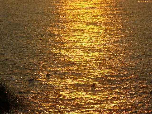 Sunset - Sunset - , Ocean, Life, Sunset - Sunset Solve free online Sunset puzzle games or send Sunset puzzle game greeting ecards  from puzzles-games.eu.. Sunset puzzle, puzzles, puzzles games, puzzles-games.eu, puzzle games, online puzzle games, free puzzle games, free online puzzle games, Sunset free puzzle game, Sunset online puzzle game, jigsaw puzzles, Sunset jigsaw puzzle, jigsaw puzzle games, jigsaw puzzles games, Sunset puzzle game ecard, puzzles games ecards, Sunset puzzle game greeting ecard