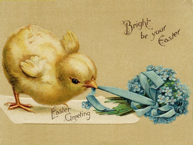 Easter Chicken Vintage Postcard - Beautiful vintage postcard with greetings for a 'Happy Easter' and a fluffy chicken, which pulls a blue ribbon, tied to a small bouquet of pretty spring flowers. The newborn adorable chickens and flowers are common symbols of Easter, which is always celebrated during the period of vernal equinox. They symbolize the beginning of the new life, and are an acknowledgement of the arrival of spring. - , Easter, chicken, chicken, vintage, postcard, postcards, cartoon, cartoons, holiday, holidays, beautiful, greetings, greeting, happy, fluffy, blue, ribbon, ribbons, bouquet, bouquets, pretty, spring, flowers, flower, newborn, adorable, symbols, symbol, period, periods, vernal, equinox, beginning, new, life, acknowledgement, acknowledgements, arrival - Beautiful vintage postcard with greetings for a 'Happy Easter' and a fluffy chicken, which pulls a blue ribbon, tied to a small bouquet of pretty spring flowers. The newborn adorable chickens and flowers are common symbols of Easter, which is always celebrated during the period of vernal equinox. They symbolize the beginning of the new life, and are an acknowledgement of the arrival of spring. Solve free online Easter Chicken Vintage Postcard puzzle games or send Easter Chicken Vintage Postcard puzzle game greeting ecards  from puzzles-games.eu.. Easter Chicken Vintage Postcard puzzle, puzzles, puzzles games, puzzles-games.eu, puzzle games, online puzzle games, free puzzle games, free online puzzle games, Easter Chicken Vintage Postcard free puzzle game, Easter Chicken Vintage Postcard online puzzle game, jigsaw puzzles, Easter Chicken Vintage Postcard jigsaw puzzle, jigsaw puzzle games, jigsaw puzzles games, Easter Chicken Vintage Postcard puzzle game ecard, puzzles games ecards, Easter Chicken Vintage Postcard puzzle game greeting ecard
