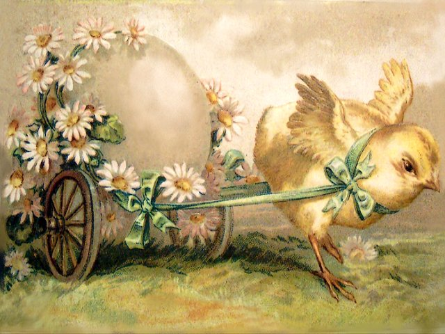 Easter Chicken with Egg in Cart Vintage Postcard - Lovely vintage Easter greetings postcard from the first half of the twentieth century, depicting a cute chicken carrying big egg in cart with daisies.<br /> The Easter holiday coincide with spring, the time of year when everything seems refreshing and new.  That's why the postcards for Easter, especially those from the Victorian era, are so charming with the themes of birth, rebirth, and renewal. The springtime symbols are the green grass, blooming beautiful pastel flowers, newly hatched chicks and fluffy bunnies. - , Easter, chicken, chickens, egg, eggs, cart, carts, vintage, postcard, postcards, cartoon, cartoons, holiday, holidays, lovely, greetings, greeting, twentieth, century, centuries, cute, egg, daisies, daisy, spring, time, year, refreshing, new, Victorian, era, charming, birth, rebirth, renewal, springtime, symbols, symbol, green, grass, blooming, beautiful, pastel, flowers, flower, newly, hatched, chicks, chick, fluffy, bunnies, bunny - Lovely vintage Easter greetings postcard from the first half of the twentieth century, depicting a cute chicken carrying big egg in cart with daisies.<br /> The Easter holiday coincide with spring, the time of year when everything seems refreshing and new.  That's why the postcards for Easter, especially those from the Victorian era, are so charming with the themes of birth, rebirth, and renewal. The springtime symbols are the green grass, blooming beautiful pastel flowers, newly hatched chicks and fluffy bunnies. Solve free online Easter Chicken with Egg in Cart Vintage Postcard puzzle games or send Easter Chicken with Egg in Cart Vintage Postcard puzzle game greeting ecards  from puzzles-games.eu.. Easter Chicken with Egg in Cart Vintage Postcard puzzle, puzzles, puzzles games, puzzles-games.eu, puzzle games, online puzzle games, free puzzle games, free online puzzle games, Easter Chicken with Egg in Cart Vintage Postcard free puzzle game, Easter Chicken with Egg in Cart Vintage Postcard online puzzle game, jigsaw puzzles, Easter Chicken with Egg in Cart Vintage Postcard jigsaw puzzle, jigsaw puzzle games, jigsaw puzzles games, Easter Chicken with Egg in Cart Vintage Postcard puzzle game ecard, puzzles games ecards, Easter Chicken with Egg in Cart Vintage Postcard puzzle game greeting ecard