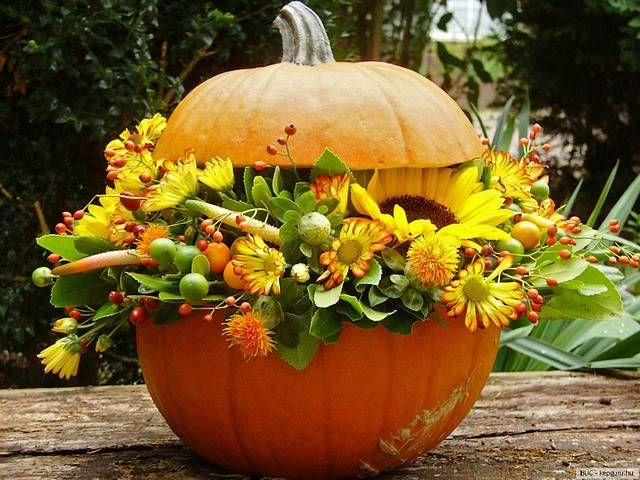 Autumn Decoration Pumpkin with Flowers - Beautiful autumn decoration for a table in the garden, with flowers in a carved pumpkin vase. - , autumn, decoration, decorations, pumpkin, pumpkins, flowers, flower, holidays, holiday, feast, feasts, nature, natures, season, seasons, beautiful, table, tables, garden, gardens, carved, pumpkin, pumpkins, vase, vases - Beautiful autumn decoration for a table in the garden, with flowers in a carved pumpkin vase. Solve free online Autumn Decoration Pumpkin with Flowers puzzle games or send Autumn Decoration Pumpkin with Flowers puzzle game greeting ecards  from puzzles-games.eu.. Autumn Decoration Pumpkin with Flowers puzzle, puzzles, puzzles games, puzzles-games.eu, puzzle games, online puzzle games, free puzzle games, free online puzzle games, Autumn Decoration Pumpkin with Flowers free puzzle game, Autumn Decoration Pumpkin with Flowers online puzzle game, jigsaw puzzles, Autumn Decoration Pumpkin with Flowers jigsaw puzzle, jigsaw puzzle games, jigsaw puzzles games, Autumn Decoration Pumpkin with Flowers puzzle game ecard, puzzles games ecards, Autumn Decoration Pumpkin with Flowers puzzle game greeting ecard