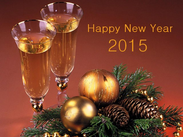 2015 Happy New Year - Let the New Year bring you the best, which the old have failed, let's start a beautiful life filled with smiles and love! With best wishes for health, happiness, prosperity, good luck and success in everything!<br />