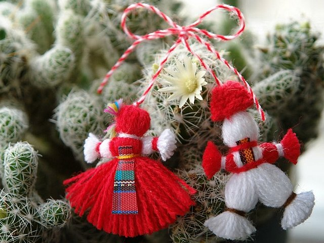 Bulgarian Martenitsa Pijo and Penda - Beautiful Bulgarian martenitsa with two dolls Pijo and Penda made of white and red yarn on a blooming cactus. Pijo is a male doll, usually predominantly in white, while Penda is a female doll, which is distinguished by red skirt. According to the Bulgarian folklore, red and white woven threads symbolize the wish for good health. They are the heralds of the coming of spring and of the new life. - , Bulgarian, martenitsa, Pijo, Penda, holiday, holidays, beautiful, dolls, doll, white, red, yarn, yarns, cactus, male, female, doll, skirt, skirts, folklore, woven, threads, thread, wish, wishes, health, heralds, herald, spring, life - Beautiful Bulgarian martenitsa with two dolls Pijo and Penda made of white and red yarn on a blooming cactus. Pijo is a male doll, usually predominantly in white, while Penda is a female doll, which is distinguished by red skirt. According to the Bulgarian folklore, red and white woven threads symbolize the wish for good health. They are the heralds of the coming of spring and of the new life. Solve free online Bulgarian Martenitsa Pijo and Penda puzzle games or send Bulgarian Martenitsa Pijo and Penda puzzle game greeting ecards  from puzzles-games.eu.. Bulgarian Martenitsa Pijo and Penda puzzle, puzzles, puzzles games, puzzles-games.eu, puzzle games, online puzzle games, free puzzle games, free online puzzle games, Bulgarian Martenitsa Pijo and Penda free puzzle game, Bulgarian Martenitsa Pijo and Penda online puzzle game, jigsaw puzzles, Bulgarian Martenitsa Pijo and Penda jigsaw puzzle, jigsaw puzzle games, jigsaw puzzles games, Bulgarian Martenitsa Pijo and Penda puzzle game ecard, puzzles games ecards, Bulgarian Martenitsa Pijo and Penda puzzle game greeting ecard