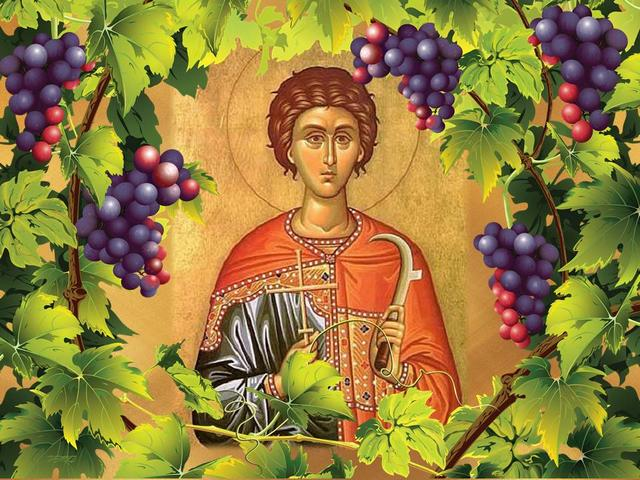 Saint Tryphon Day of the Grower - Saint Tryphon is a Christian priest who is considered to be the keeper of the vineyards, who is often depicted as a young man with different cutting tools. Legend has it that he was brother of the Virgin Mary and is known for his healing abilities. Tryphon Zarezan (or the Day of the Grower) is a Bulgarian folk festival in honour of Saint Tryphon. Traditionally on this day is done symbolically first pruning of the vineyards for encouraging the growth of the vines. Tryphon Zarezan is celebrated by wine growers, falconers, gardeners and innkeepers on 14th of February (according to the Gregorian calendar) or the February 1st (the Julian calendar), when the Bulgarian Orthodox Church officially honours Saint Tryphon. - , saint, saints, Tryphon, day, days, grower, growers, holidays, holiday, feast, feasts, Christian, priest, priests, keeper, keepers, vineyards, vineyard, young, man, men, cutting, tools, tool, legend, brother, brothers, Virgin, Mary, healing, abilities, ability, Bulgarian, folk, festival, festivals, honour, growth, vines, vine, wine, falconers, falconer, gardeners, gardener, innkeepers, innkeeper, February, Gregorian, calendar, calendars, Julian, Orthodox, church, churches - Saint Tryphon is a Christian priest who is considered to be the keeper of the vineyards, who is often depicted as a young man with different cutting tools. Legend has it that he was brother of the Virgin Mary and is known for his healing abilities. Tryphon Zarezan (or the Day of the Grower) is a Bulgarian folk festival in honour of Saint Tryphon. Traditionally on this day is done symbolically first pruning of the vineyards for encouraging the growth of the vines. Tryphon Zarezan is celebrated by wine growers, falconers, gardeners and innkeepers on 14th of February (according to the Gregorian calendar) or the February 1st (the Julian calendar), when the Bulgarian Orthodox Church officially honours Saint Tryphon. Solve free online Saint Tryphon Day of the Grower puzzle games or send Saint Tryphon Day of the Grower puzzle game greeting ecards  from puzzles-games.eu.. Saint Tryphon Day of the Grower puzzle, puzzles, puzzles games, puzzles-games.eu, puzzle games, online puzzle games, free puzzle games, free online puzzle games, Saint Tryphon Day of the Grower free puzzle game, Saint Tryphon Day of the Grower online puzzle game, jigsaw puzzles, Saint Tryphon Day of the Grower jigsaw puzzle, jigsaw puzzle games, jigsaw puzzles games, Saint Tryphon Day of the Grower puzzle game ecard, puzzles games ecards, Saint Tryphon Day of the Grower puzzle game greeting ecard