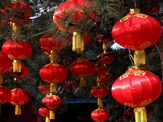 Traditional Chinese Red Lanterns - Trees, decorated with traditional Chinese red lanterns at the Spring Festival in China. - , traditional, Chinese, red, lanterns, lantern, holidays, holiday, festival, festivals, celebrations, celebration, Spring, Festival, festivals, China - Trees, decorated with traditional Chinese red lanterns at the Spring Festival in China. Solve free online Traditional Chinese Red Lanterns puzzle games or send Traditional Chinese Red Lanterns puzzle game greeting ecards  from puzzles-games.eu.. Traditional Chinese Red Lanterns puzzle, puzzles, puzzles games, puzzles-games.eu, puzzle games, online puzzle games, free puzzle games, free online puzzle games, Traditional Chinese Red Lanterns free puzzle game, Traditional Chinese Red Lanterns online puzzle game, jigsaw puzzles, Traditional Chinese Red Lanterns jigsaw puzzle, jigsaw puzzle games, jigsaw puzzles games, Traditional Chinese Red Lanterns puzzle game ecard, puzzles games ecards, Traditional Chinese Red Lanterns puzzle game greeting ecard
