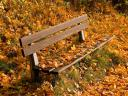 Autumn Park Bench Wallpaper