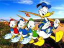 Disney Summer Donald Duck and Ducklings Gang Wallpaper