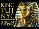King Tut Exhibition at Discovery Times Square in New York USA Poster