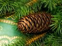 Christmas Decoration with Pinecone