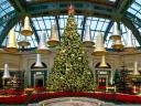 Christmas Tree at Bellagio Conservatory and Botanical Gardens Las Vegas Nevada