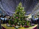 Christmas Tree in Central Moscow